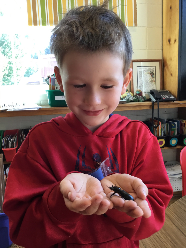 Student holding Bess Bug