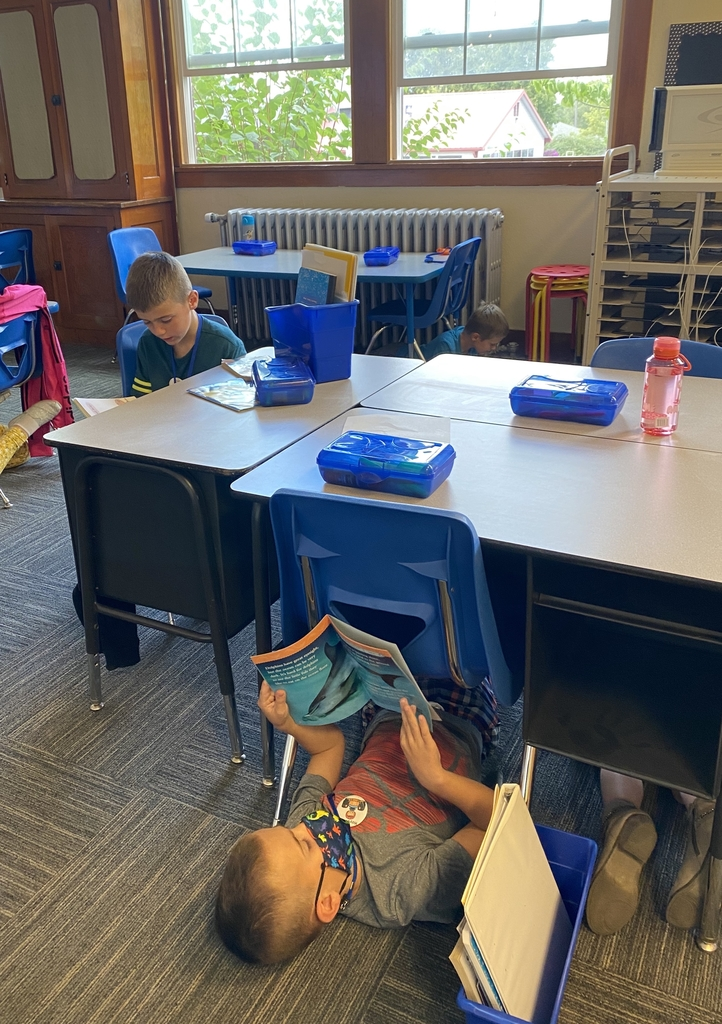 Working on our reading stamina.